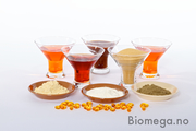 Shop Best Quality Canadian Salmon Oil At Biomega,  AS