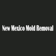 Professional Mold Removal Service in Albuquerque